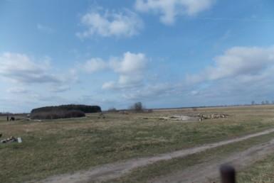 Grunt rolny 3 ha w Borzysławcu