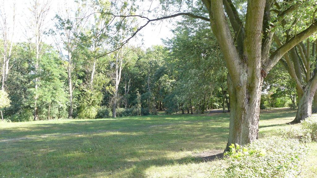 Dom przy parku