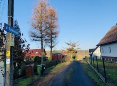 Kto chcialby wybudowac dom z lesnym widokiem?
