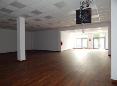 Pow. 181 m2, mag-handl, witryny