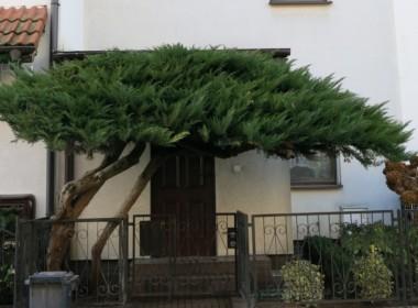 Znalazłeś Twój nowy dom!
